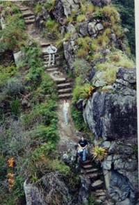 Hiking up Huyana Picchu; I\'m in the green T-shirt
